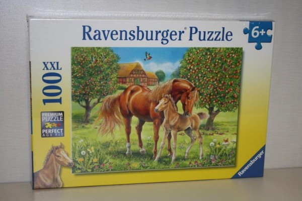 Puzzle 100T XXL Pferdegl